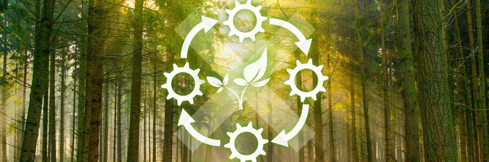 Schulung Umweltmanagement ISO 14001 Basiswissen